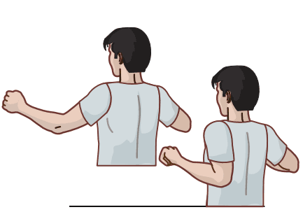 image of diagram for shoulder blade pull exercise